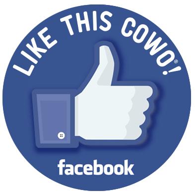 Facebook Legnano Coworking